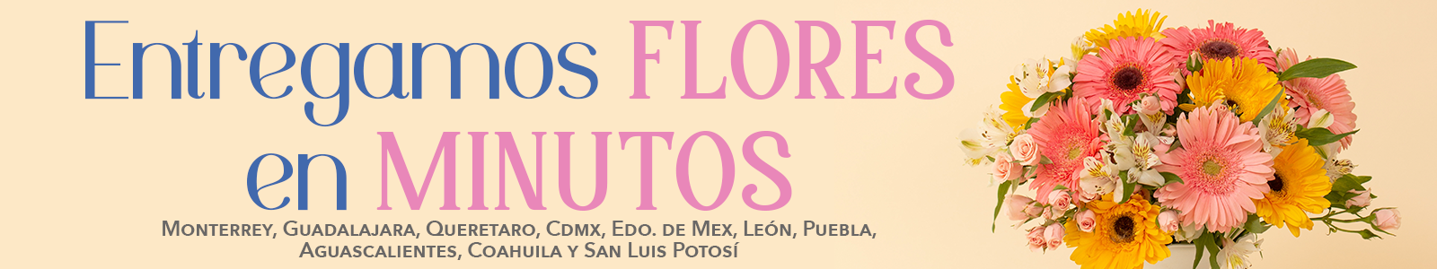 Florería Suspiros - Banner