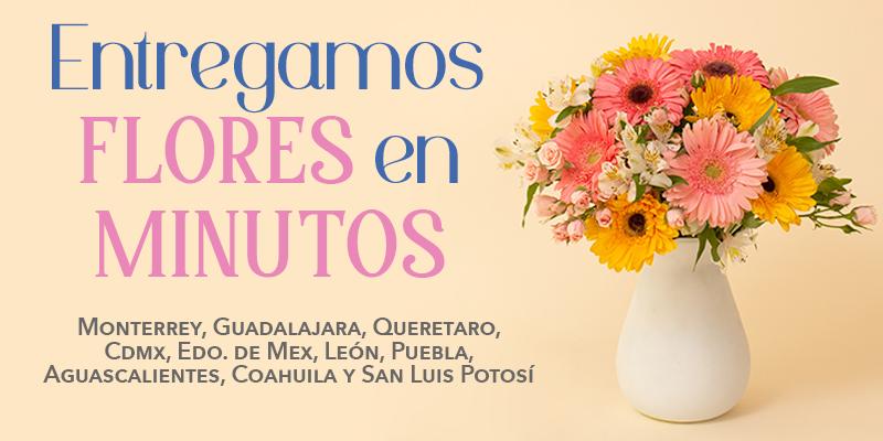 Florería Suspiros - Banner Mobile